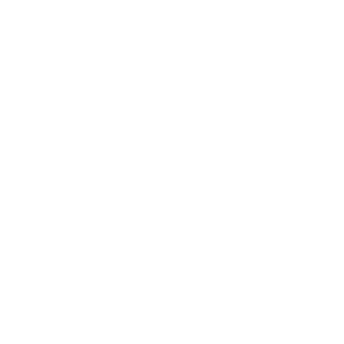 Civil </br>Litigation